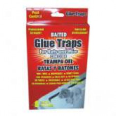 Pest Control Glue Traps 1 Pack 4Pk