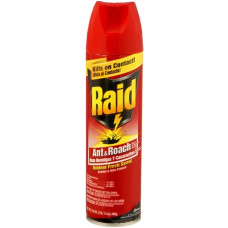 Raid Ant&Roach 1 Pack 17.5Oz Outdoor Scent